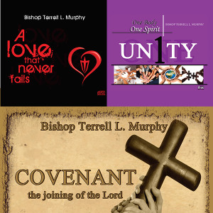 Love-Unity-Covenant-Series-Combo